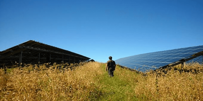 Solar Power Now 1/3 of New Energy Generated in US